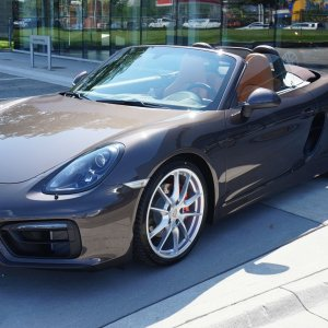 Anthracite Brown GTS