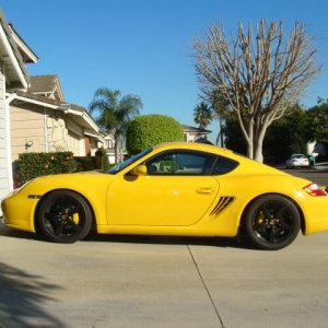 Yellow Cayman