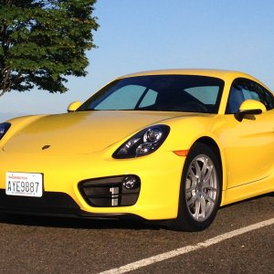 Racing Yellow 981 Cayman