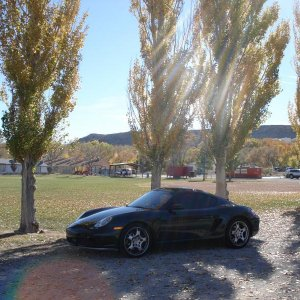 In The Fall....blue Diamond, Nv