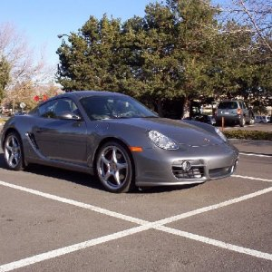 Coupe-De-Gras Seal Grey Cayman