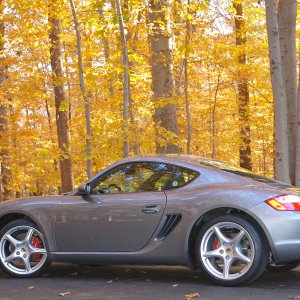 Cayman S In The Woods